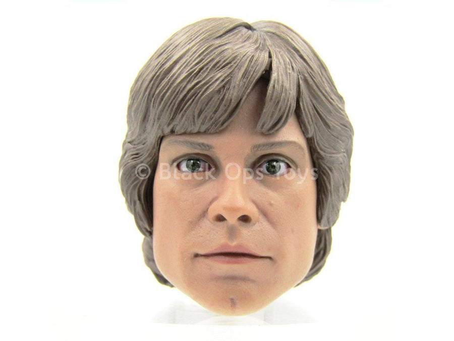 STAR WARS - Hoth Luke Skywalker - Head Sculpt