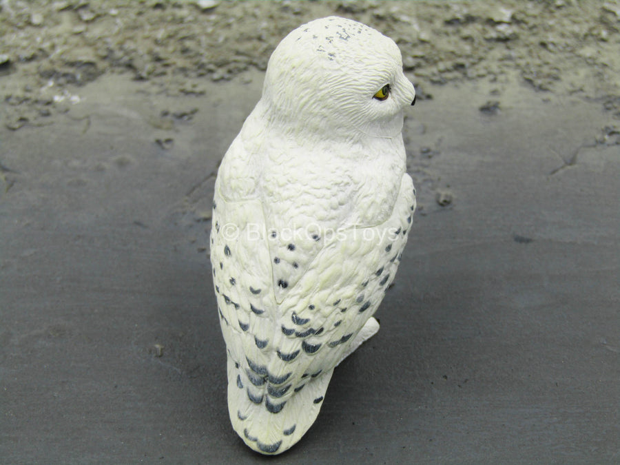 Harry Potter - Headwig the Snow Owl