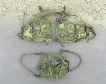 Tiger Stripe Chest Rig and OD Green Pack