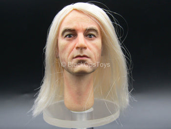Harry Potter - Lucius Malfoy - Male Head Sculpt