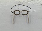 US Army Airborne Rangers - Brown Glasses