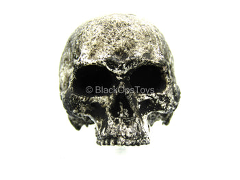 Gray Weathered Decorative Skull