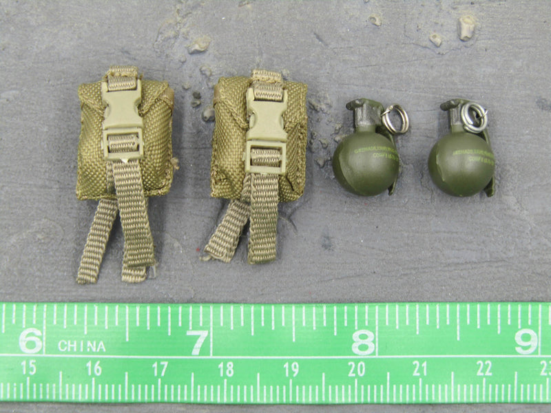 USMC 2nd MEB Helmand - Coyote Tan MOLLE Grenade Pouch w/Grenade