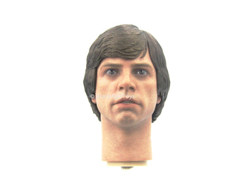 STAR WARS - Luke Skywalker Head Sculpt in Mark Hamill Likeness