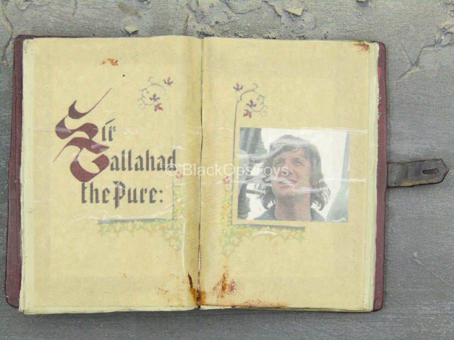 Monty Python THG - Gallahad The Pure Book