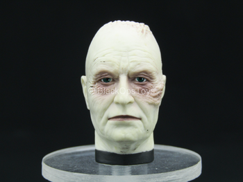 Star Wars - Darth Vader - Male Head Sculpt w/Mustafar Burns