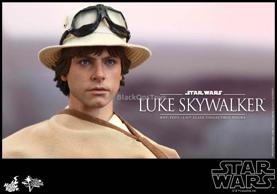 Hot Toys Sideshow Exclusive Star Wars Luke Skywalker Headsculpt w/Magnetic Hair