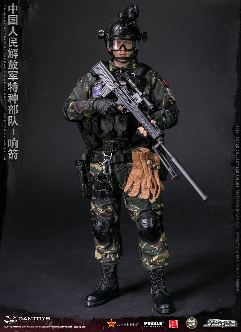 1//6 scale toy Chinese PLA Special Forces Participants Badge