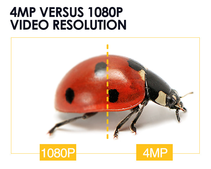4MP versus 1080P Video Resolution