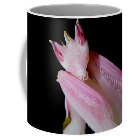 Buy Orchid Praying Mantis Mug For Sale | PanTerra Pets