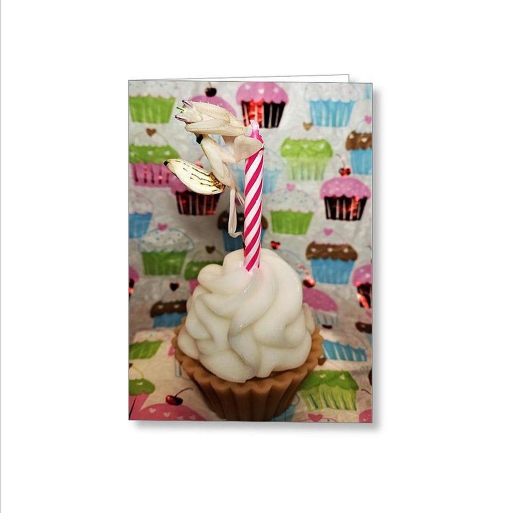 Buy Orchid Mantis Birthday Card For Sale