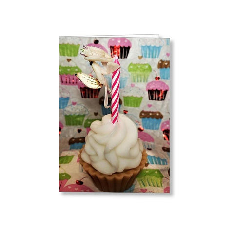 Buy Orchid Mantis Birthday Card For Sale | PanTerra Pets