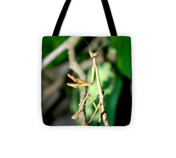 Hanging Out In The Trees - Tote Bag *
