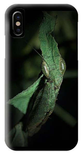 Leaves With Eyes - Phone Case*
