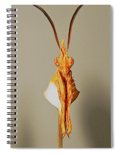 Portrait Of A Living Instrument - Spiral Notebook*