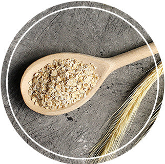Superfoods - Oats