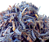 Image of CBD Infused Tea - Blazen Berry