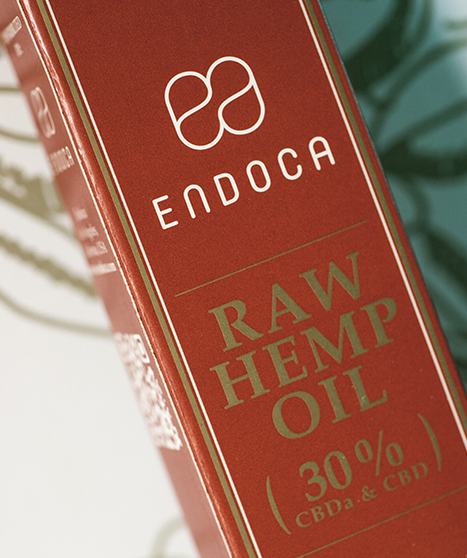 Endoca RAW Golden Hemp Oil Paste 2000mg or 3000mg CBD + CBDa