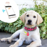 Pet Smart GPS Tracker Mini Anti-Lost Waterproof Bluetooth Locator Tracer For Pet Dog Cat Kids Car Wallet Key Collar Accessories ( JUST PAY SHIPPING)