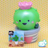 Koi the Cactus Squishy (+FREE collector pin)