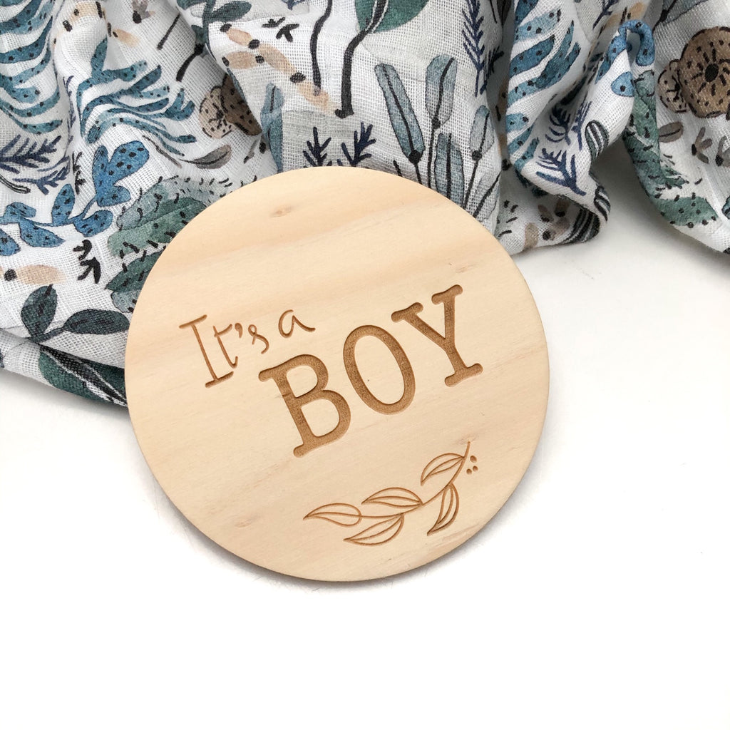 Gender Reveal Baby Milestone Discs