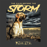 Calm Before The Storm Mens Short Sleeve T-shirt