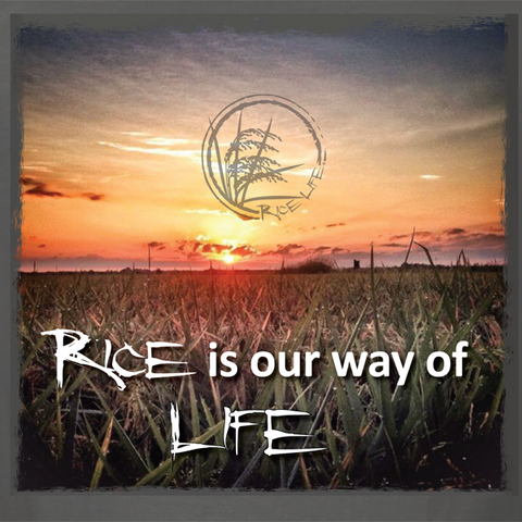 Rice is our way of life