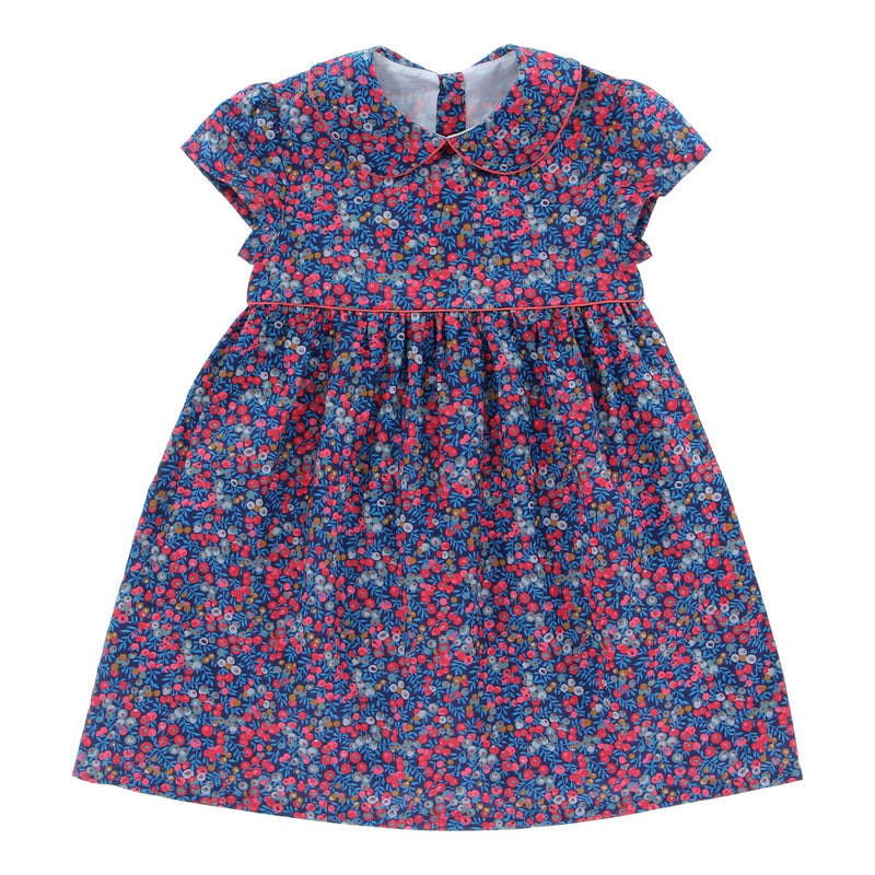 Naomi Blueberrylicious Dress