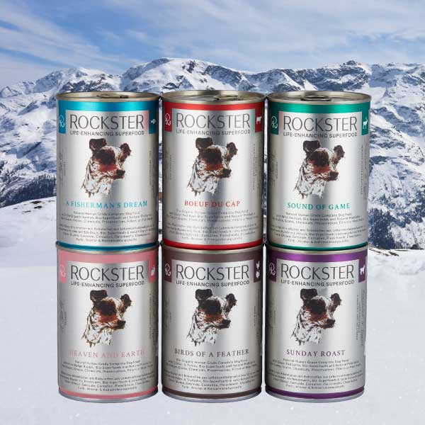 Rockster Available in 6 Flavours