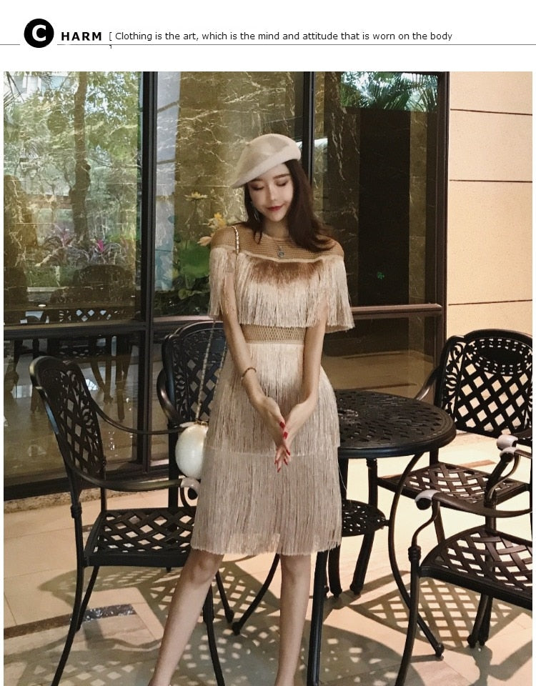 Fringe Dress Vintage Elegant Sexy Party Wear Beach Mesh Tight Streetwear Sundress Runway  Women Summer Dress tassel