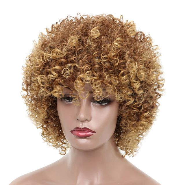 16Inches Long Afro Kinky Curly Wigs for Black Women Blonde Mixed Brown Synthetic Wigs African Hairstyle - Style Lavish