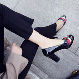 Chunky High Heels Platform Pointed Toe Party Fashion Women Shoes