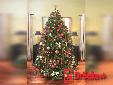 Send Christmas Tree to Pakistan with DrBake.pk