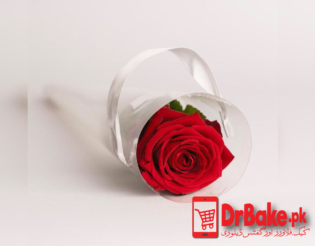 Imported Single Stem in Cone Packing - Dr Bake Pakistan Send gifts to Lahore, Karachi, Islamabad, Pakistan