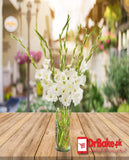 12 Fresh White Glad in Jar - Dr Bake Pakistan Send gifts to Lahore, Karachi, Islamabad, Pakistan