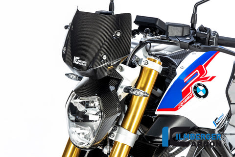 Windshield for BMW R1250R - Ilmberger Carbon