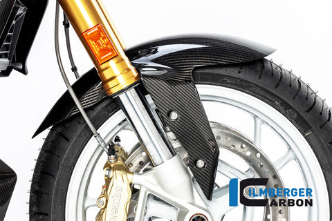 Front Fender for BMW R1250R - Ilmberger Carbon