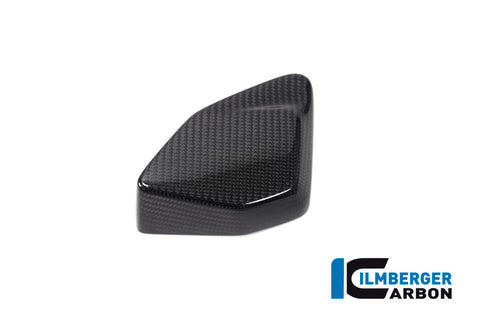 ESA Box Cover for BMW R1250GS/Adventure - Ilmberger Carbon