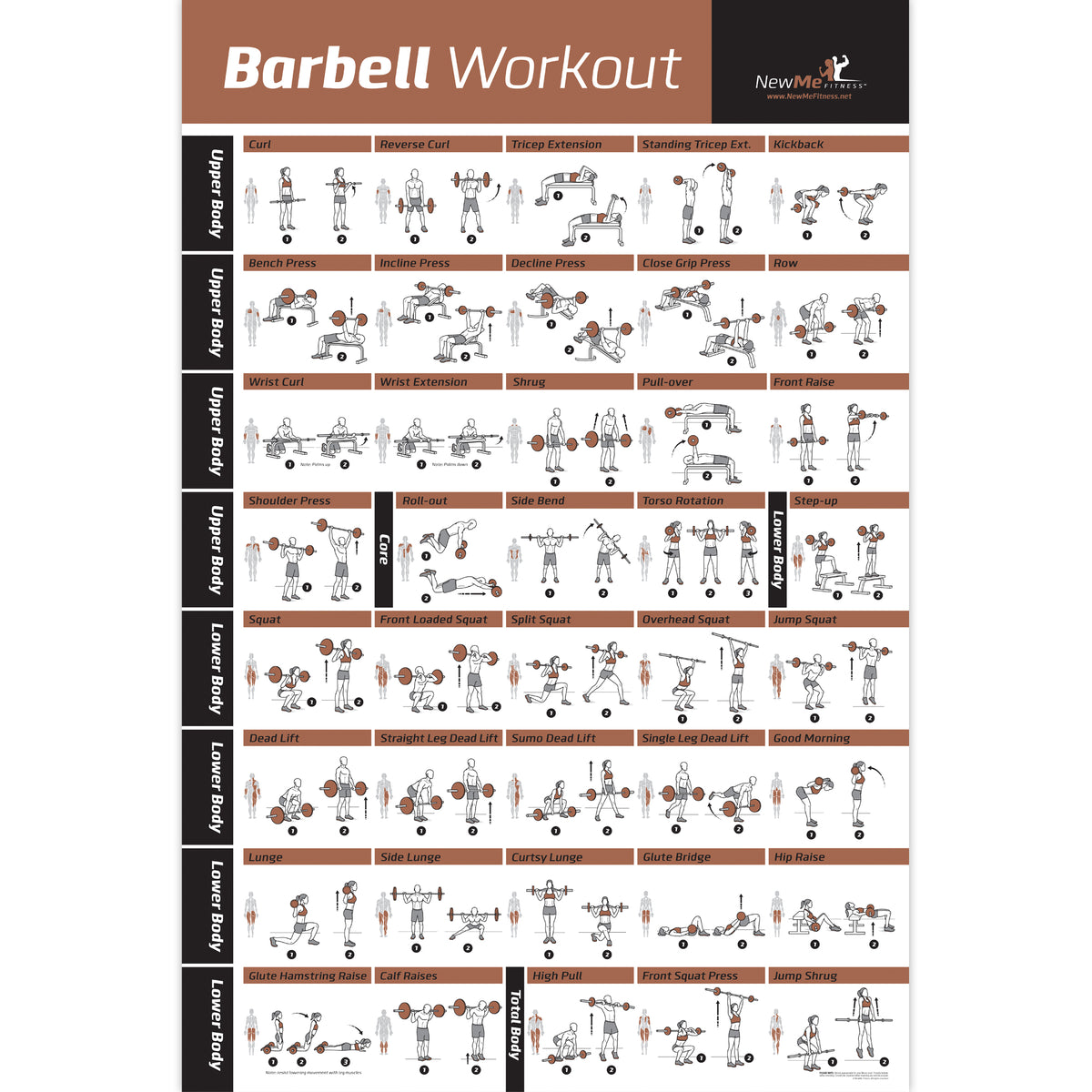 Barbell Exercise Poster Laminated 20 Quot X30 Quot Newmefitness