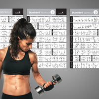 "Dumbbell Exercise Poster Vol. 1,2,3 3-Pack-Laminated - 20""x30"""
