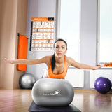 "Stability Ball Exercise Poster - Laminated - 20""x 30"""
