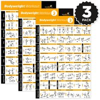 "Bodyweight Exercise Poster Vol. 1,2,3 3-Pack - Laminated - 20""x30"""