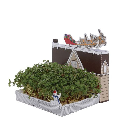Christmas Garden Growing Kit - Stuff & All Ltd