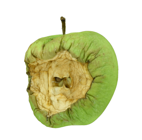 Rotten Apple #1 - _blankRepository