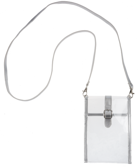 Small Clear Purse