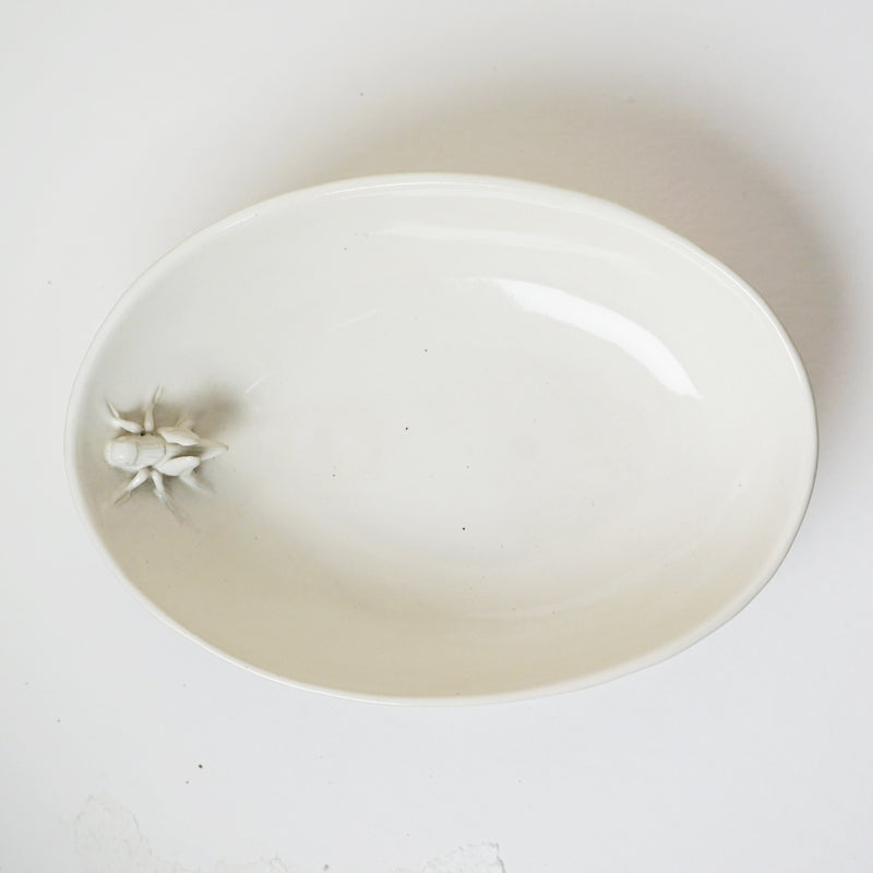 Cricket Bowl - Oval