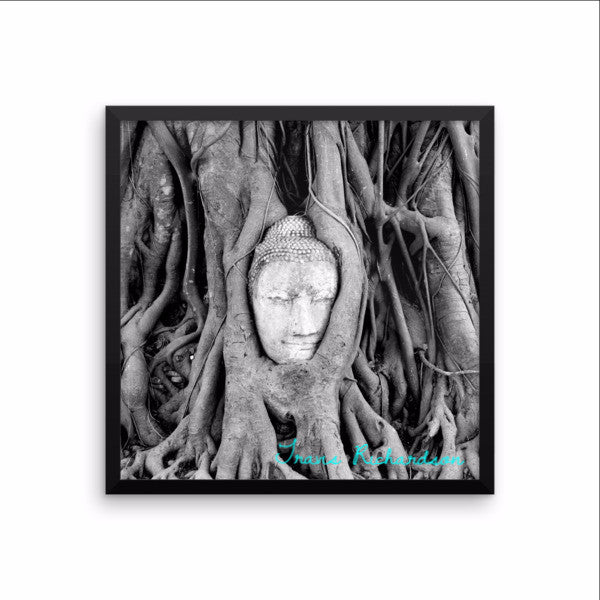 Ayutthaya Roots, Framed Art, - Explore Dream Discover
