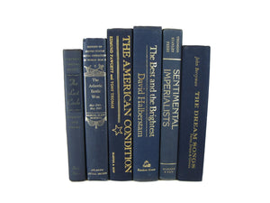 Blue Decorative Book Set, S/6 - Decades of Vintage