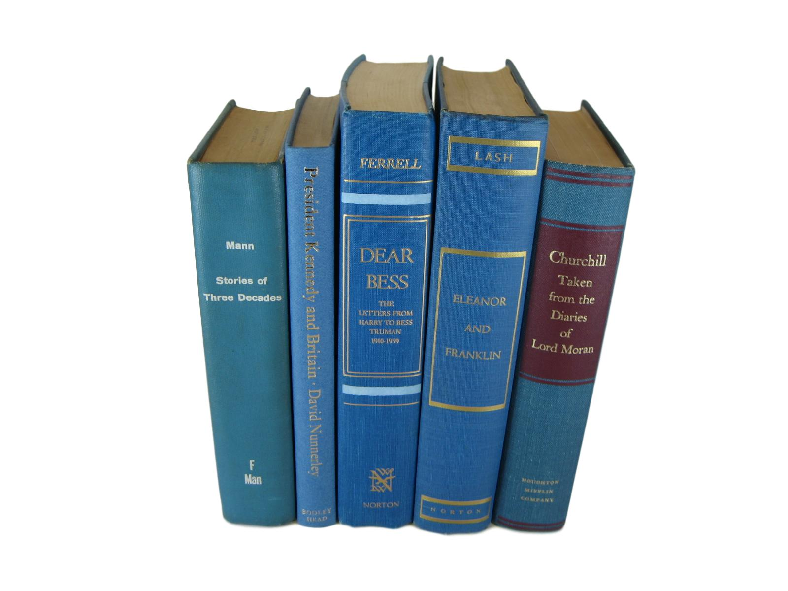 Blue Vintage Book Decor, S/5 - Decades of Vintage