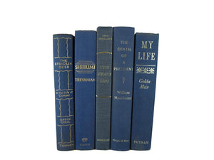 Blue Decorative Books for Mantel and Home Decorating, S/5 - Decades of Vintage
